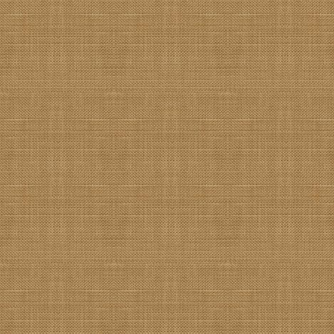 Springer Honey Fabric ,  , large