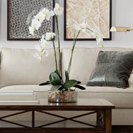 Triple Phalaenopsis in Glass ,  , hover_image