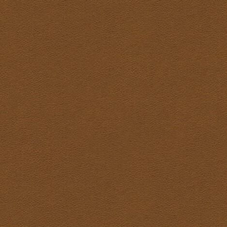 Omni Light Brown Leather Swatch ,  , large
