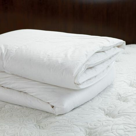 Down Duvet Insert ,  , large