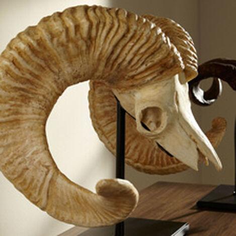 Horned Skull on Stand ,  , hover_image