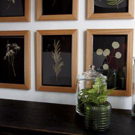 Botanicals on Black X ,  , hover_image