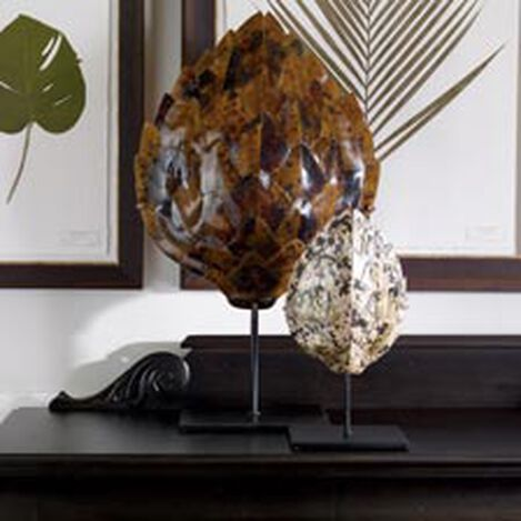 Large Pen Shell Turtle Mount ,  , hover_image