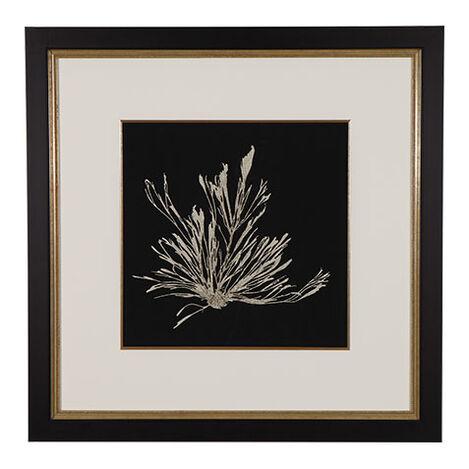 Seaweed on Black III ,  , large