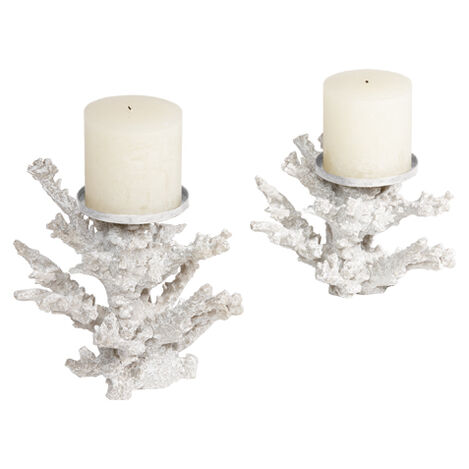 Staghorn Coral Candlestands ,  , large