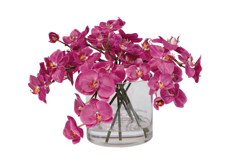 Fuchsia Orchids in Glass Cylinder ,  , large_gray