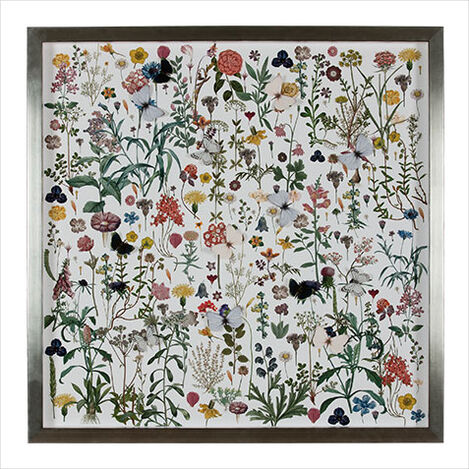 Floral Study with Butterflies ,  , large