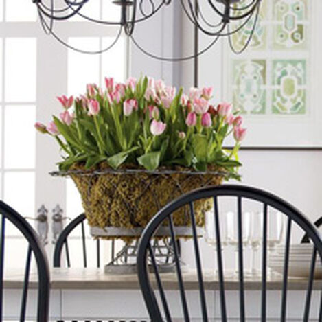French Wire Round Planter ,  , hover_image