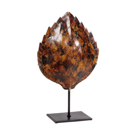 Large Pen Shell Turtle Mount ,  , large