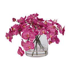 Fuchsia Orchids in Glass Cylinder Recommended Product