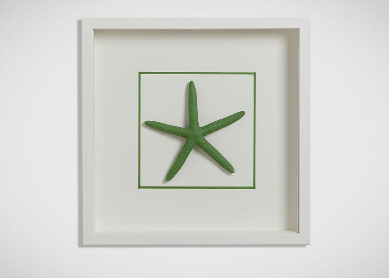 Kelly Green Starfish ,  , large_gray