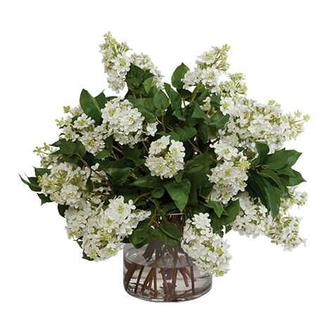 White Lilac Watergarden ,  , large