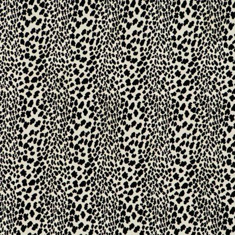 Congo Black Fabric ,  , large