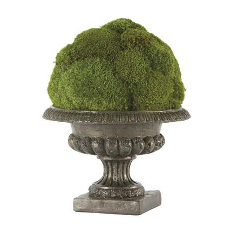 Moss Ball in Urn Product Tile Image 444042
