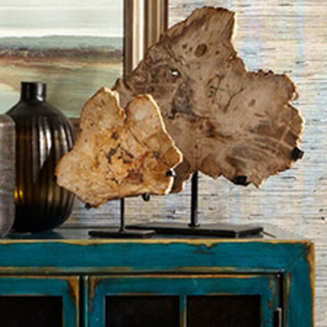 Medium Petrified Wood on Stand ,  , hover_image