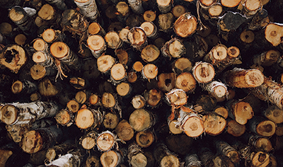 close-up of pile of logs