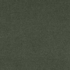 Camby Green (59122), high performance plain Camby Fabric