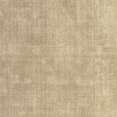 Champagne Demarest Rug
