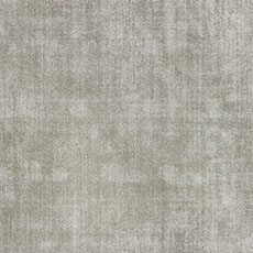Platinum Demarest Rug